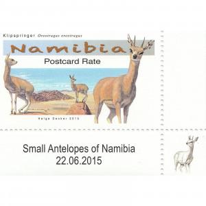 Small Antelopes Single Set