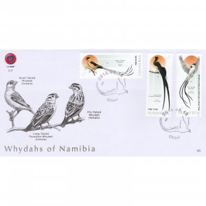 Whydahs of Namibia