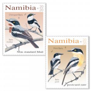 batises of namibia Single Set