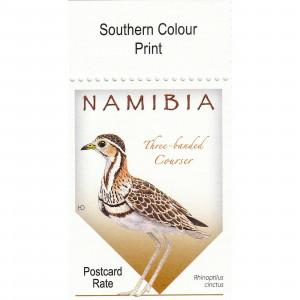 Courses of Namibia Single Set