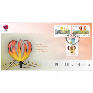 Flame Lilies of Namibia