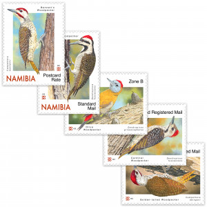 woodpeckers of namibia Single Set