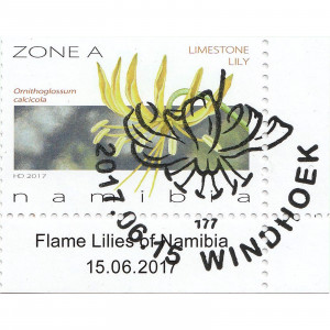 Flame Lilies of Namibia Single Set