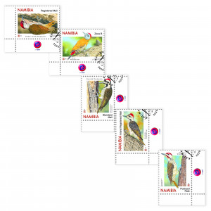 woodpeckers of namibia Single Set