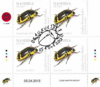Beetles of Namibia