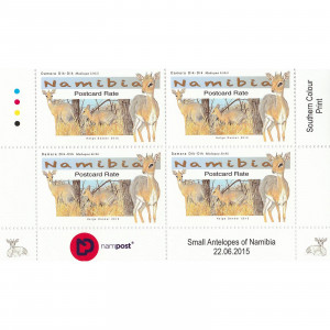 Small Antelopes Control Block