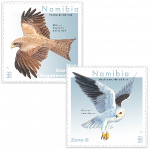 Kites of Namibia