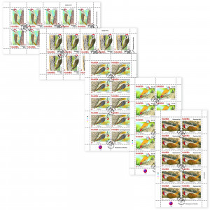 woodpeckers of namibia Full Sheet