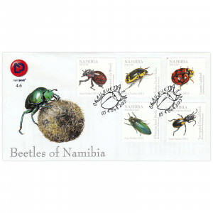 Beetles of Namibia