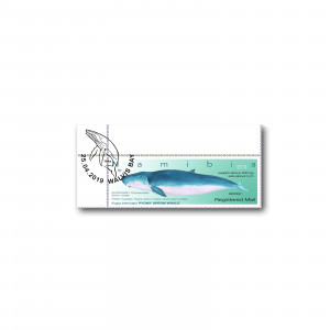 Reprint  Whales of Namibia